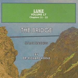 Luke Volume 17